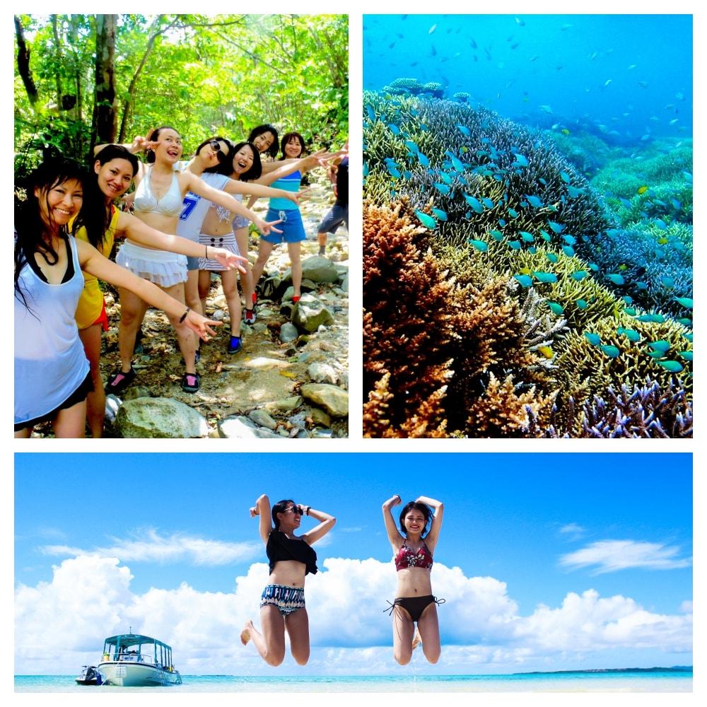 幻の島 + トロピカルシュノーケル + 青の洞窟シュノーケル