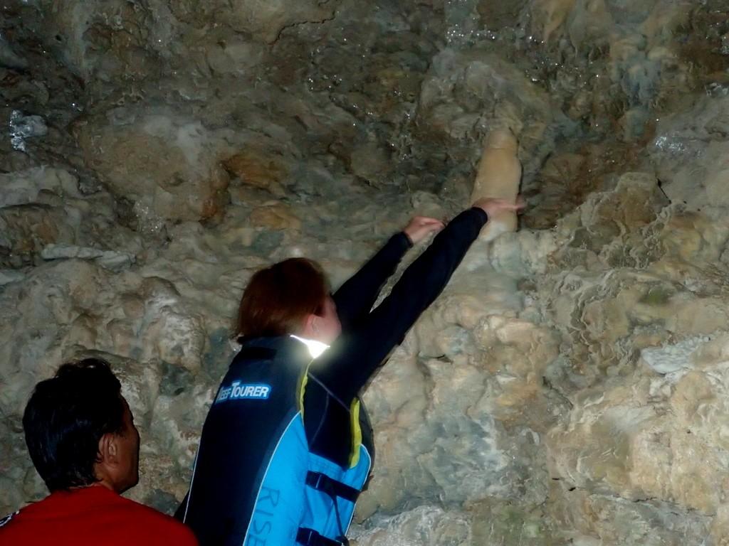 洞窟の鍾乳石